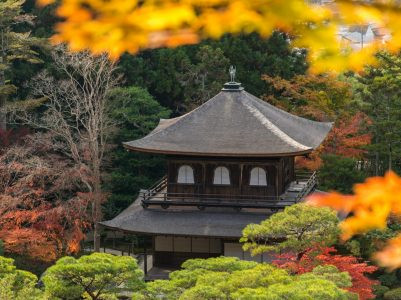 A Shinto Perspective on the Relationship Between Natural Rainforests and Human Life